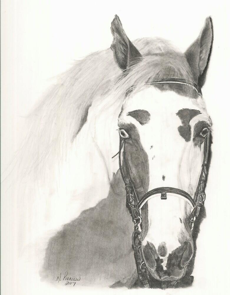 Cherokee - graphite by Marlene Piccolin