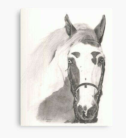 Cherokee - graphite Canvas Print