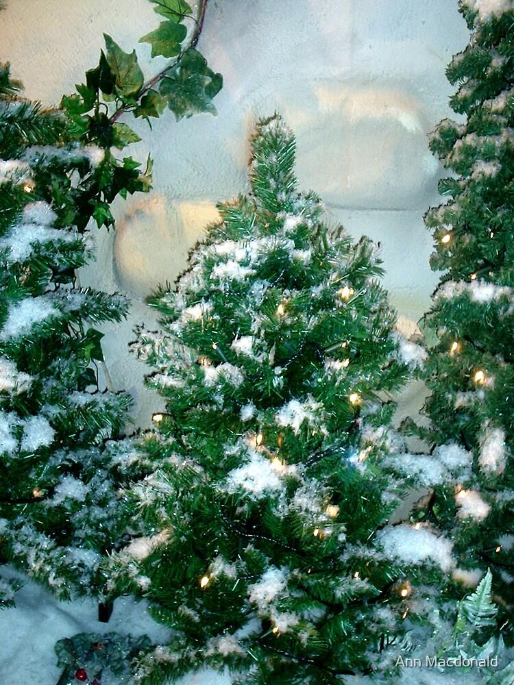 Snowy xmas trees by Ann Macdonald