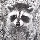 Racoon kit - graphite by Marlene Piccolin