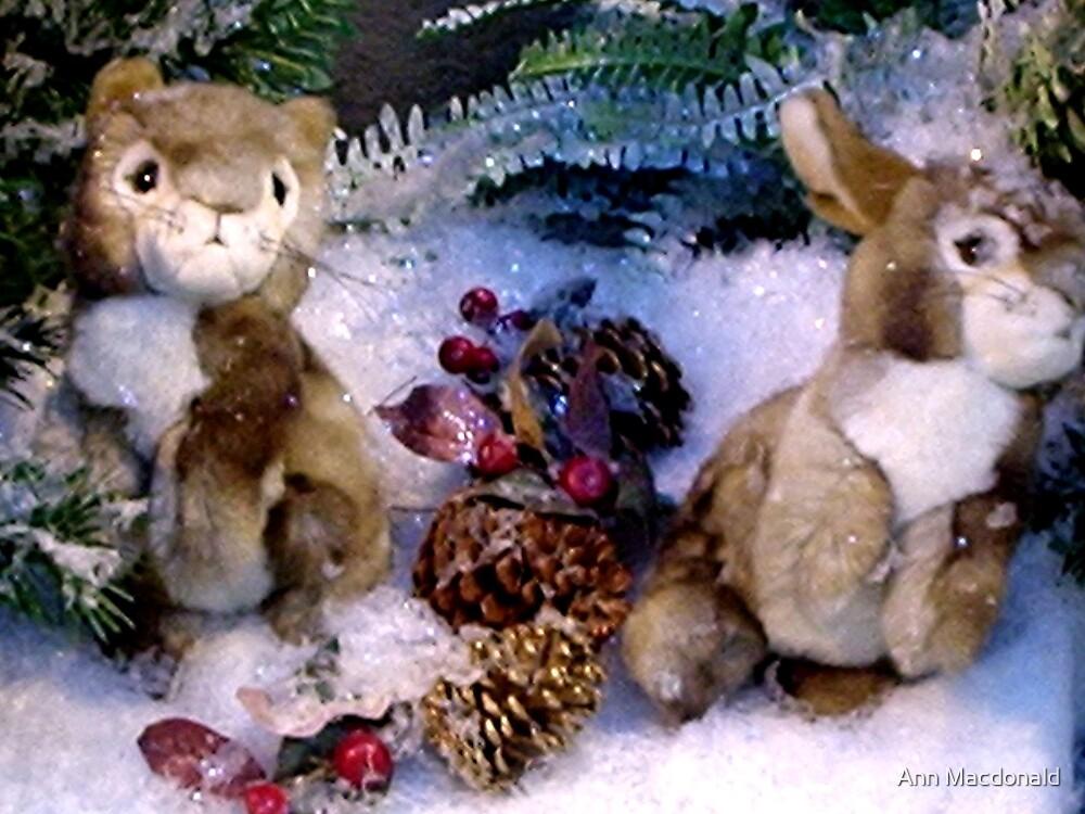 xmas bunnies by Ann Macdonald