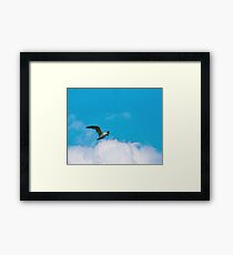 Flying seagull, clouds on the sky Framed Print