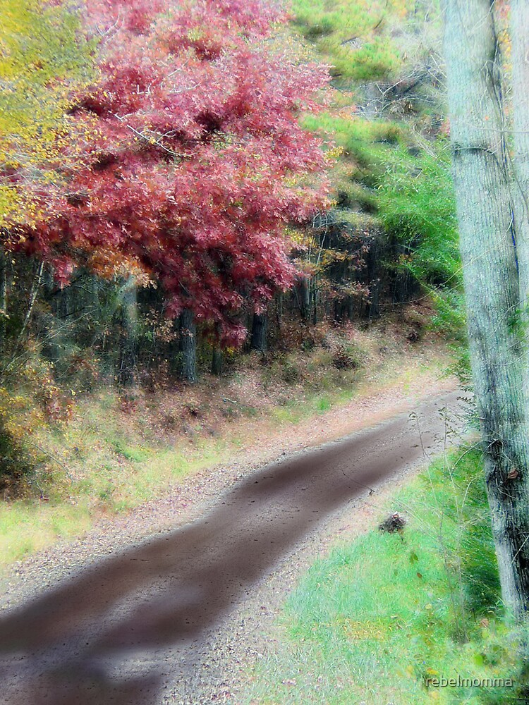 The Road by rebelmomma
