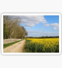 Country Lane in Spring Sticker