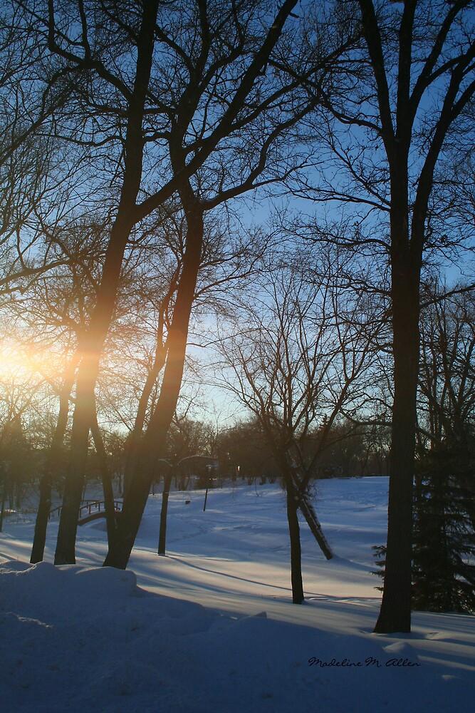 Winter Sunset by Madeline M  Allen