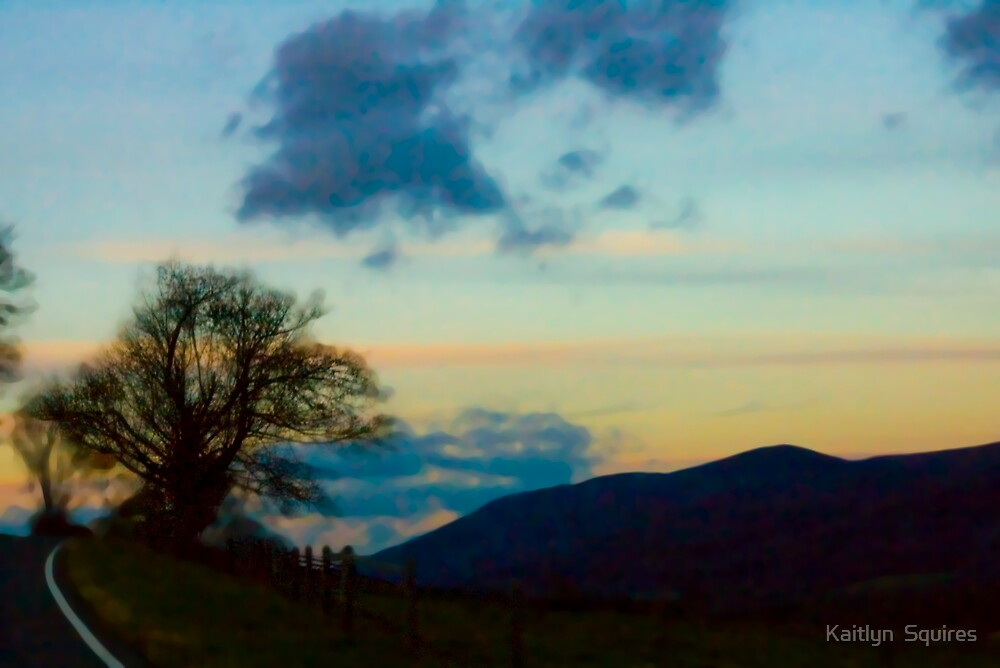 Lone Tree by Kaitlyn  Squires