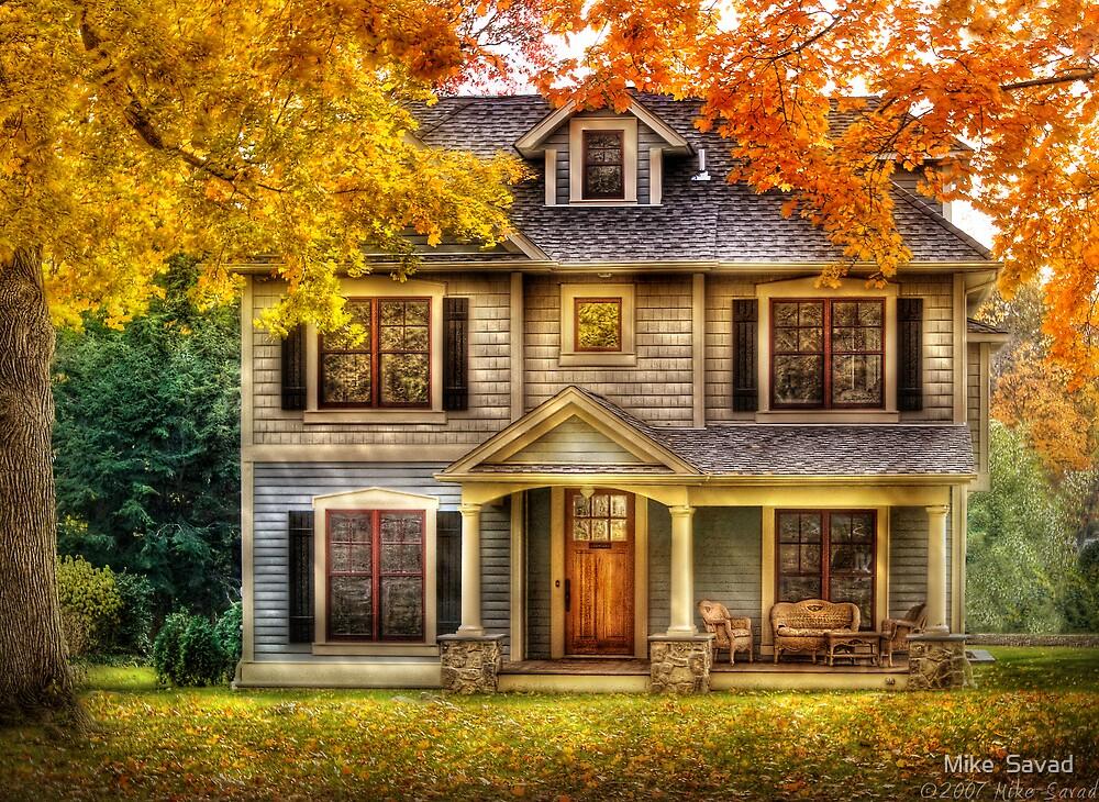 Cottage by Michael Savad