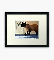 Take Me To Your Leader Framed Print