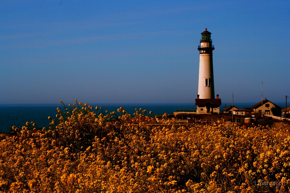 Pigeon Point by Lmarcacci