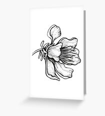 sakura blossom, illustration, white, flower, graphic, floral, design, print Greeting Card