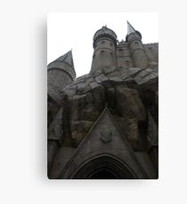 for witches and wizards Canvas Print