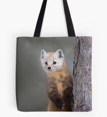 Curious Pine Marten Tote Bag