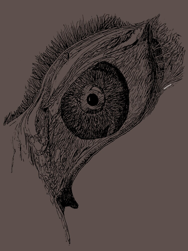tear drop shroom eye by acid