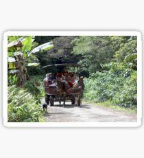 Waipio Carriage Ride Sticker