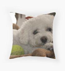 Bored Bichon Throw Pillow