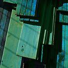Green wood by Bluesrose