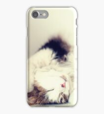 Cute kitten iPhone Case/Skin