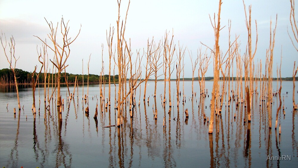 Reservoir Trees by AnneRN