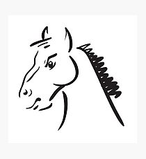 an horse on white background Photographic Print