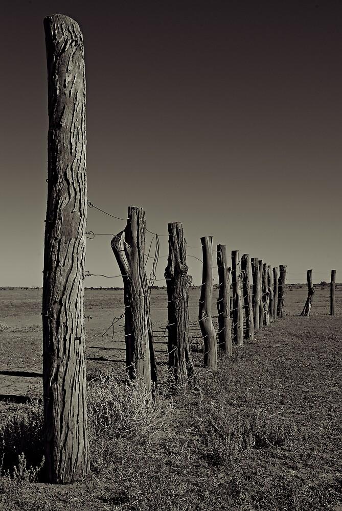 Old Cattle Yard by Craig Hender