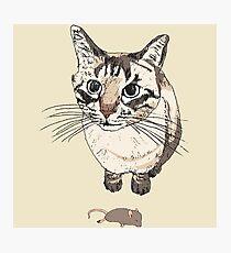 Cat & Dead Mouse Present Photographic Print