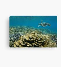 ocean underwater coral reef sea turtle Canvas Print