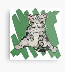 American Shorthair Cat scratch Metal Print
