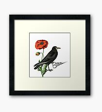 Crow & Scissors  Framed Print