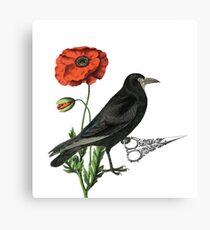 Crow & Scissors  Canvas Print