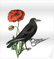 Crow & Scissors  Poster