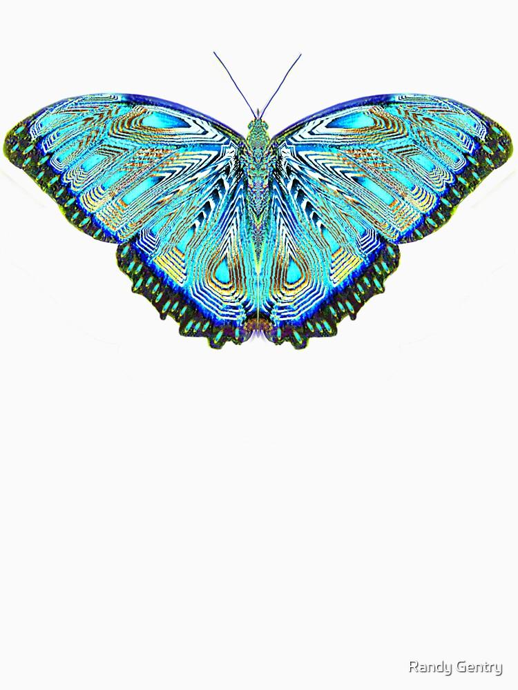 Fantasy Butterfly Aurora by Lanaki