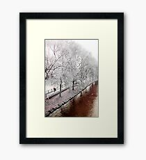 on a certain river bank Framed Print