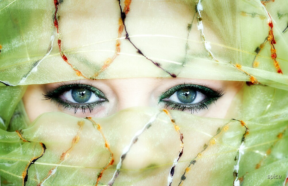 looking from within by spice
