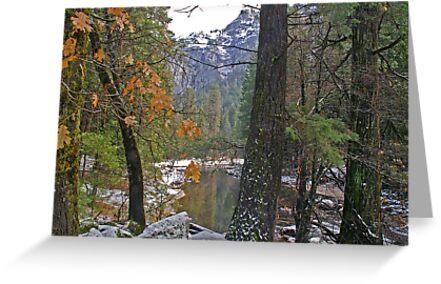 Yosemite #1 - USA by Paul Gilbert