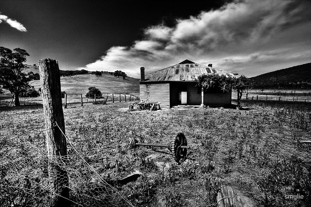 The back yard by smylie