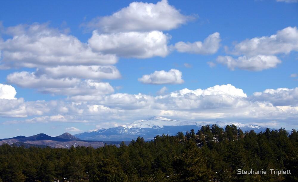 Blue Sky's of Colorado  by Stephanie  Triplett