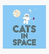 Cats in Space R268b Photographic Print