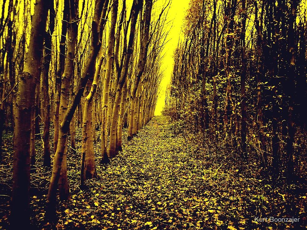golden land by Kurt Boonzajer