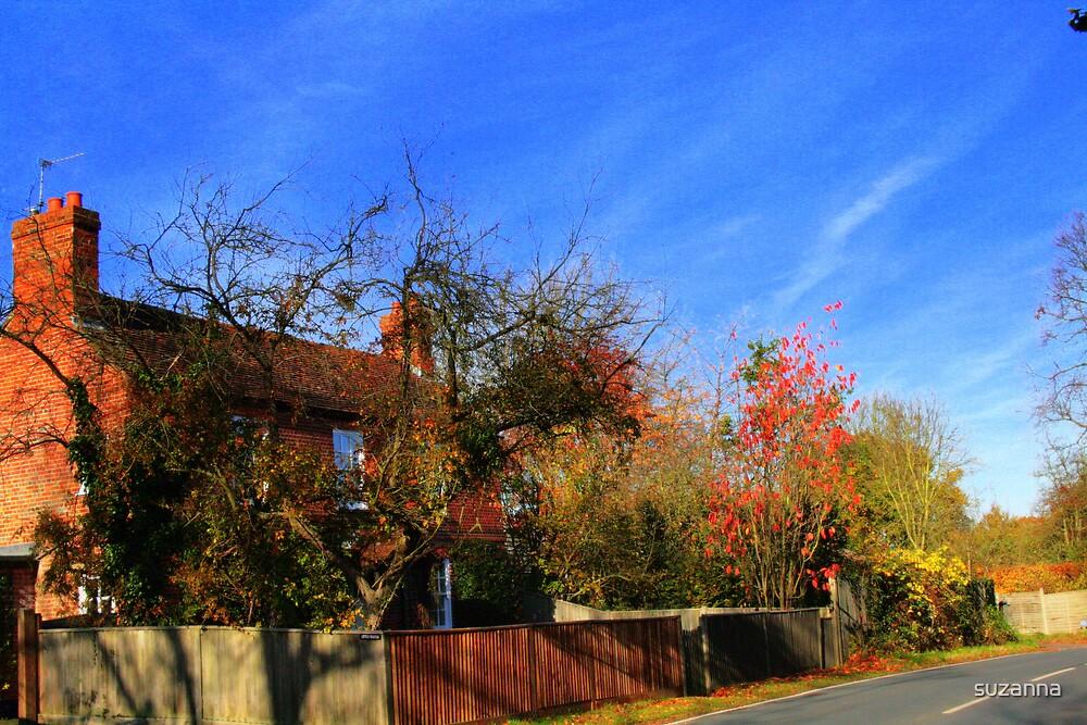 Village Cottage by suzanna