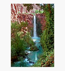 Moony Falls and Tree Photographic Print