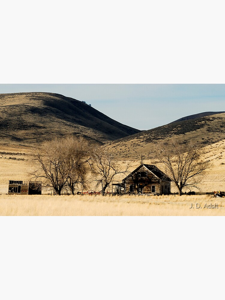 Ghost Farm by adsitprojectpro
