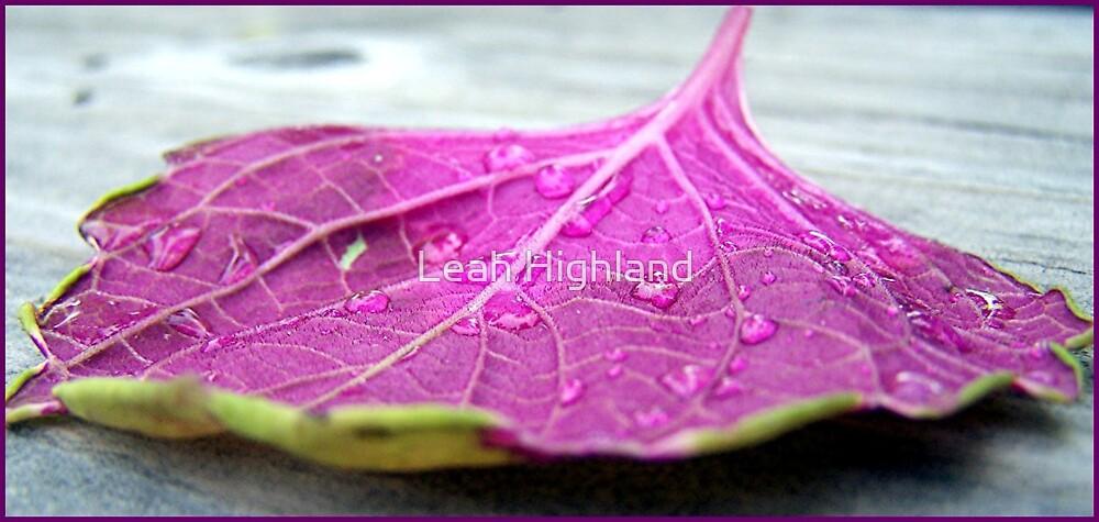 Rain on Me by Leah Highland