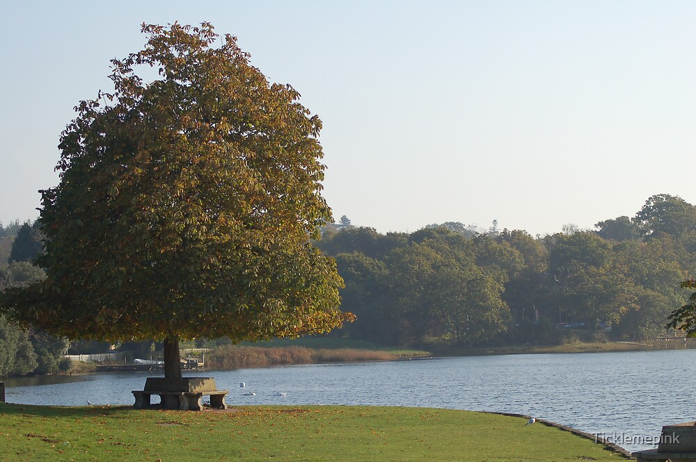 Beaulieu River Hampshire by Ticklemepink