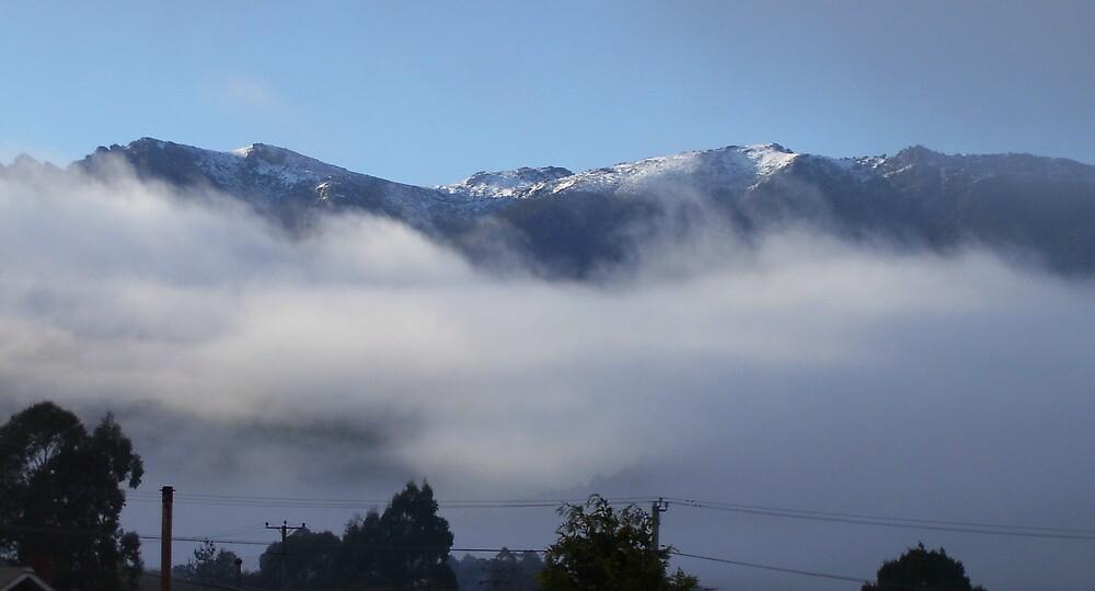 snowy peaks of Mt Murchison, Rosebery, Tasmania by gaylene