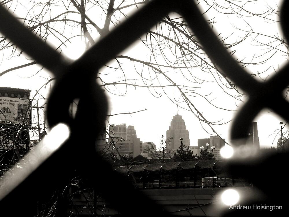 The Fence that Framed Detroit  by Andrew Hoisington