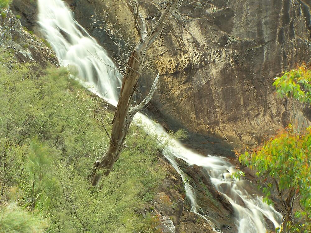 Falling Water by aperture