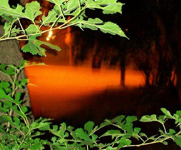 LSD At Night by viqi
