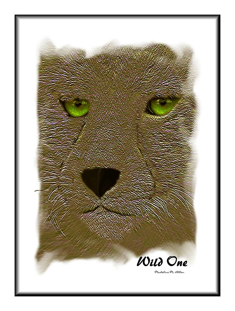Wild One by Madeline M  Allen