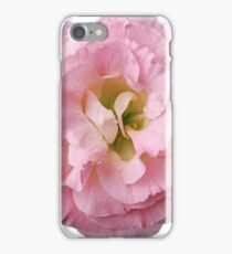Pink Flower Petals with Green Background iPhone Case/Skin