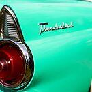 Green Thunderbird by Norman Repacholi